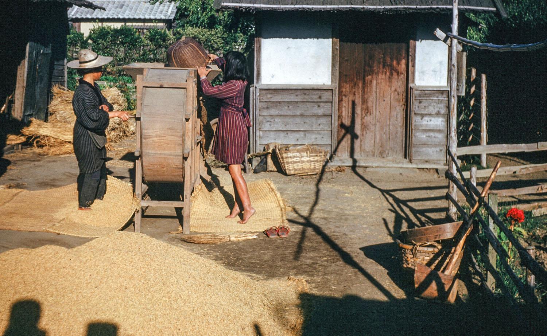 68- Rice Hulling