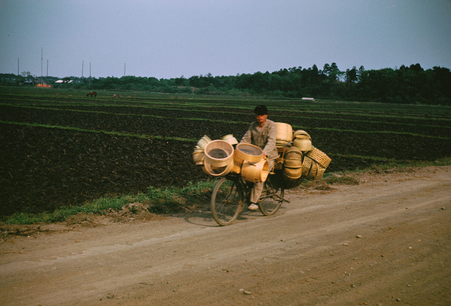 274-Bicyclist with Baskets