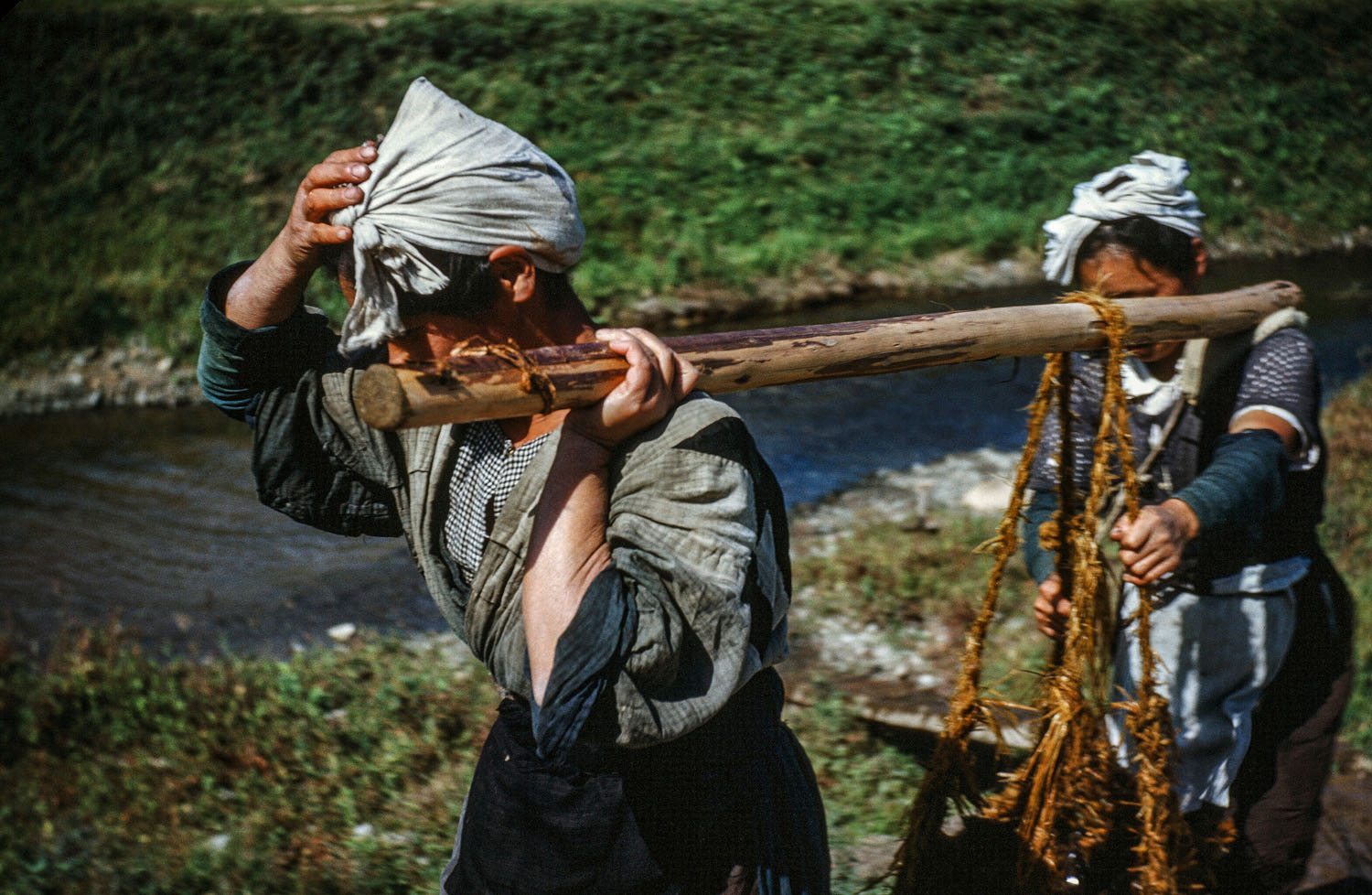 314-Women Carrying Load on Poles