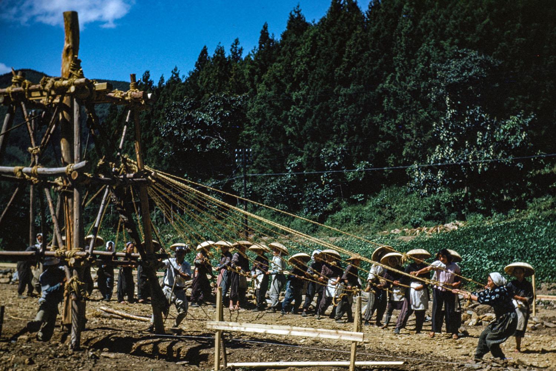 316-Women Raising Pole