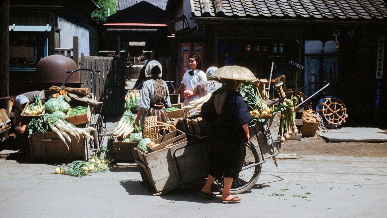 363-Vegetable Carts