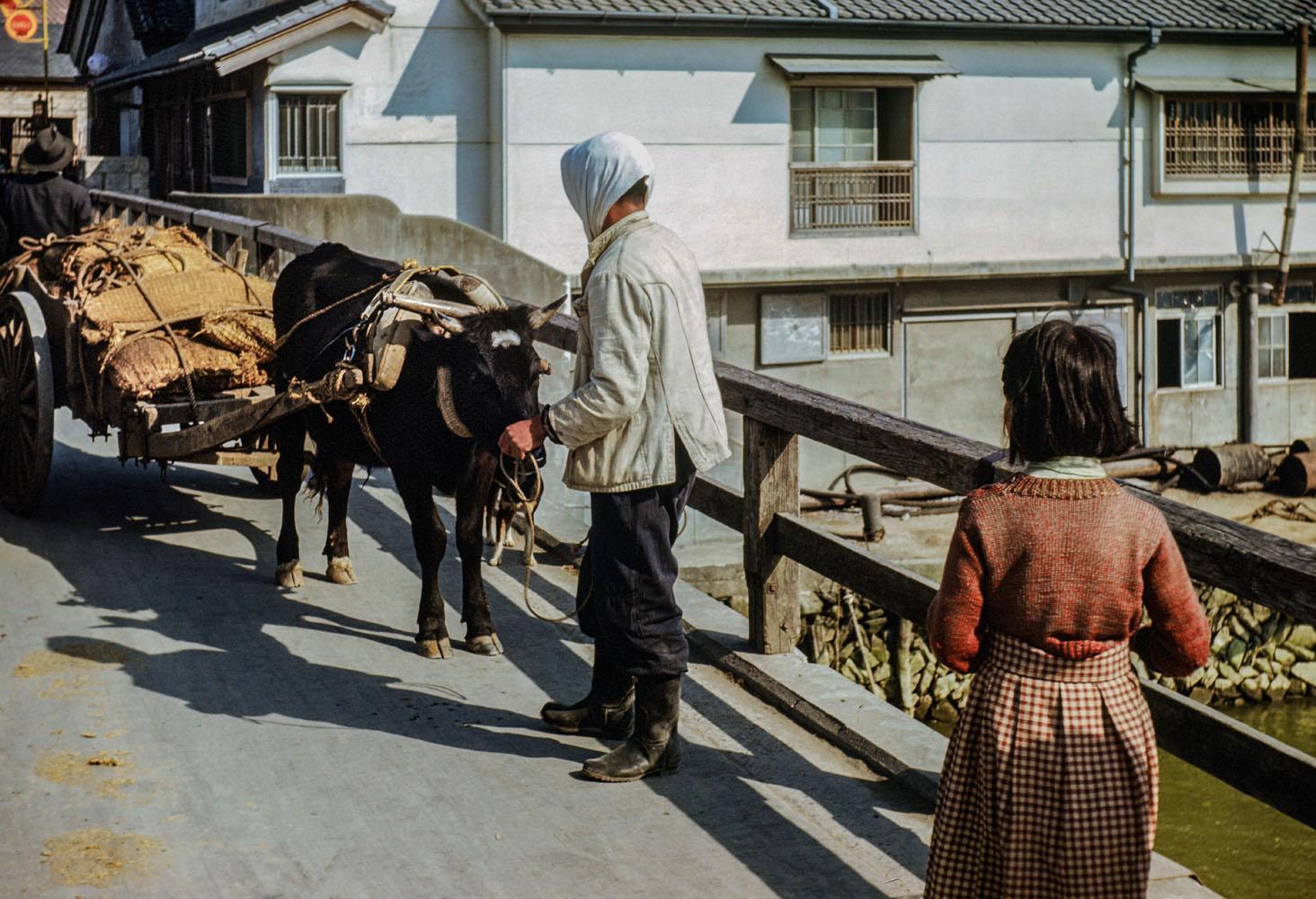 415-Kyukitakami Bridge, Ox Cart with load of ?