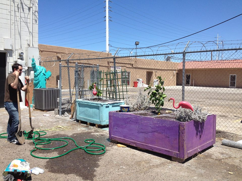 Volunteering to help plant a community garden in downtown Las Vegas.