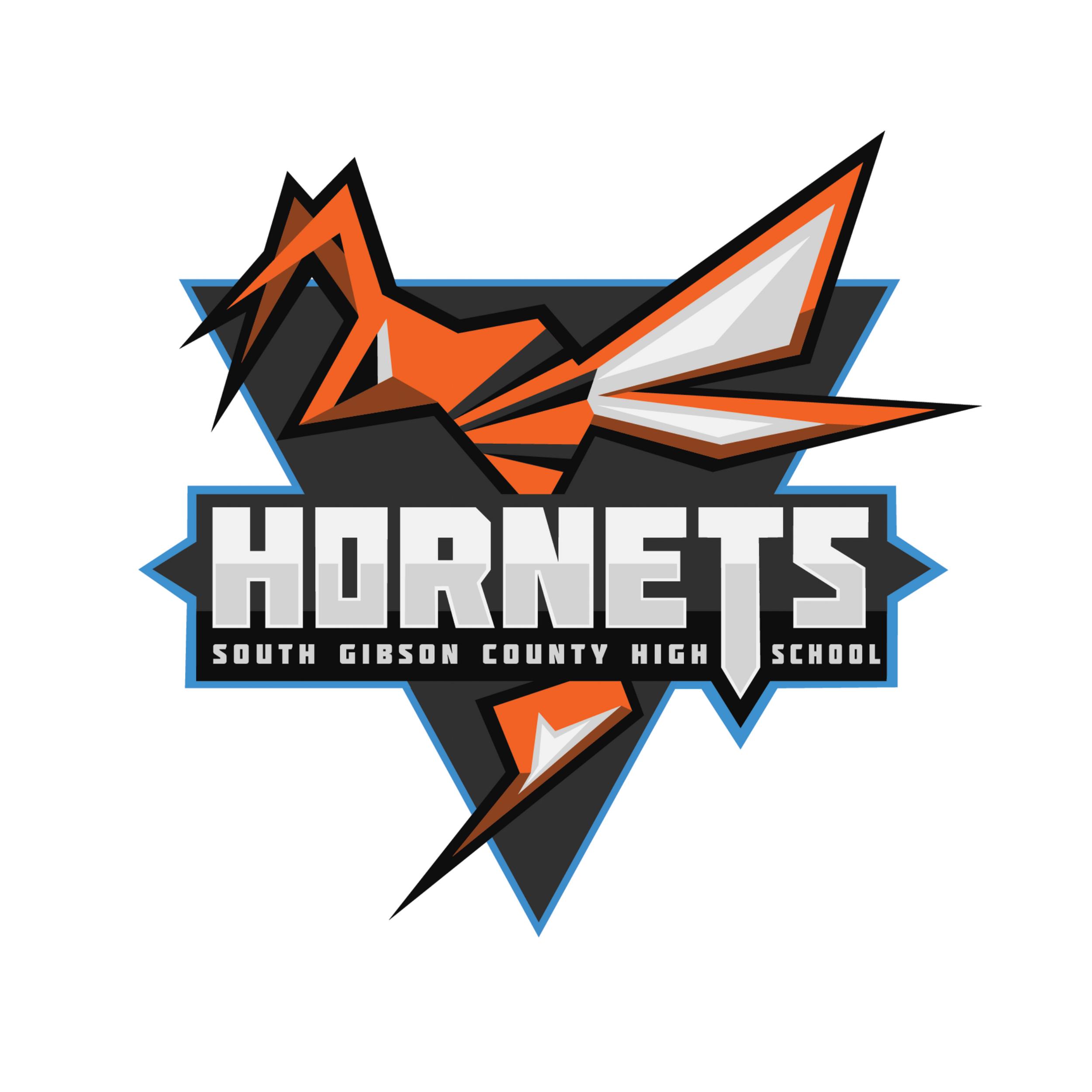 Hornets Sports Branding