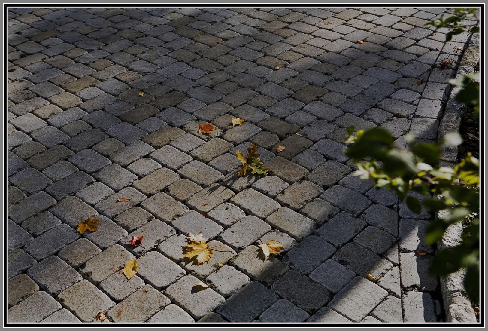 Tumbled natural stone paver driveway.