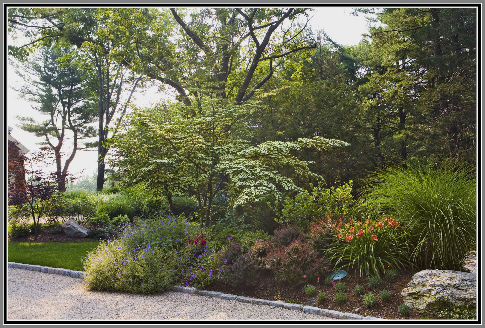 Driveway planting by Artistic Outdoors