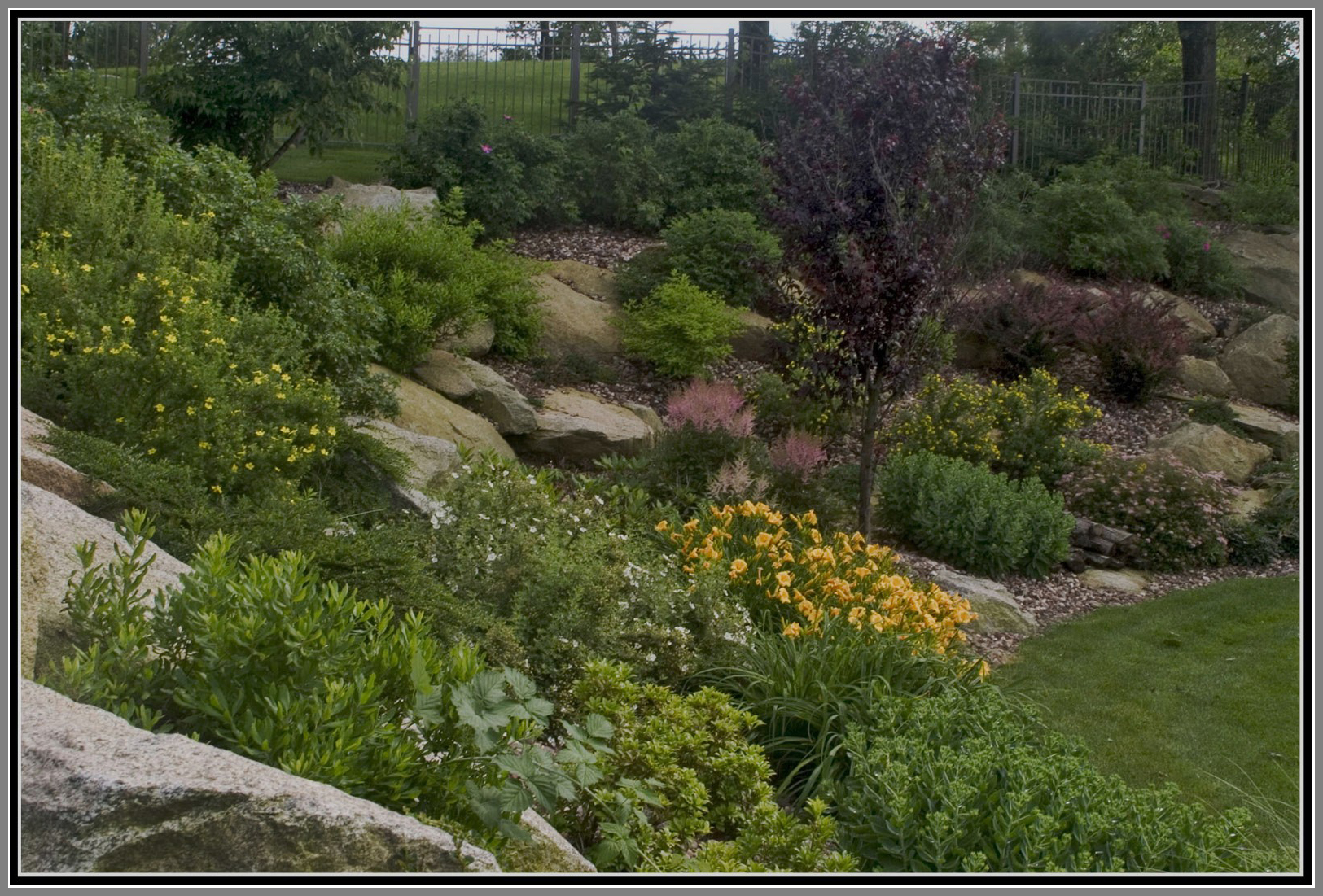 Steep slope plantings with boulders