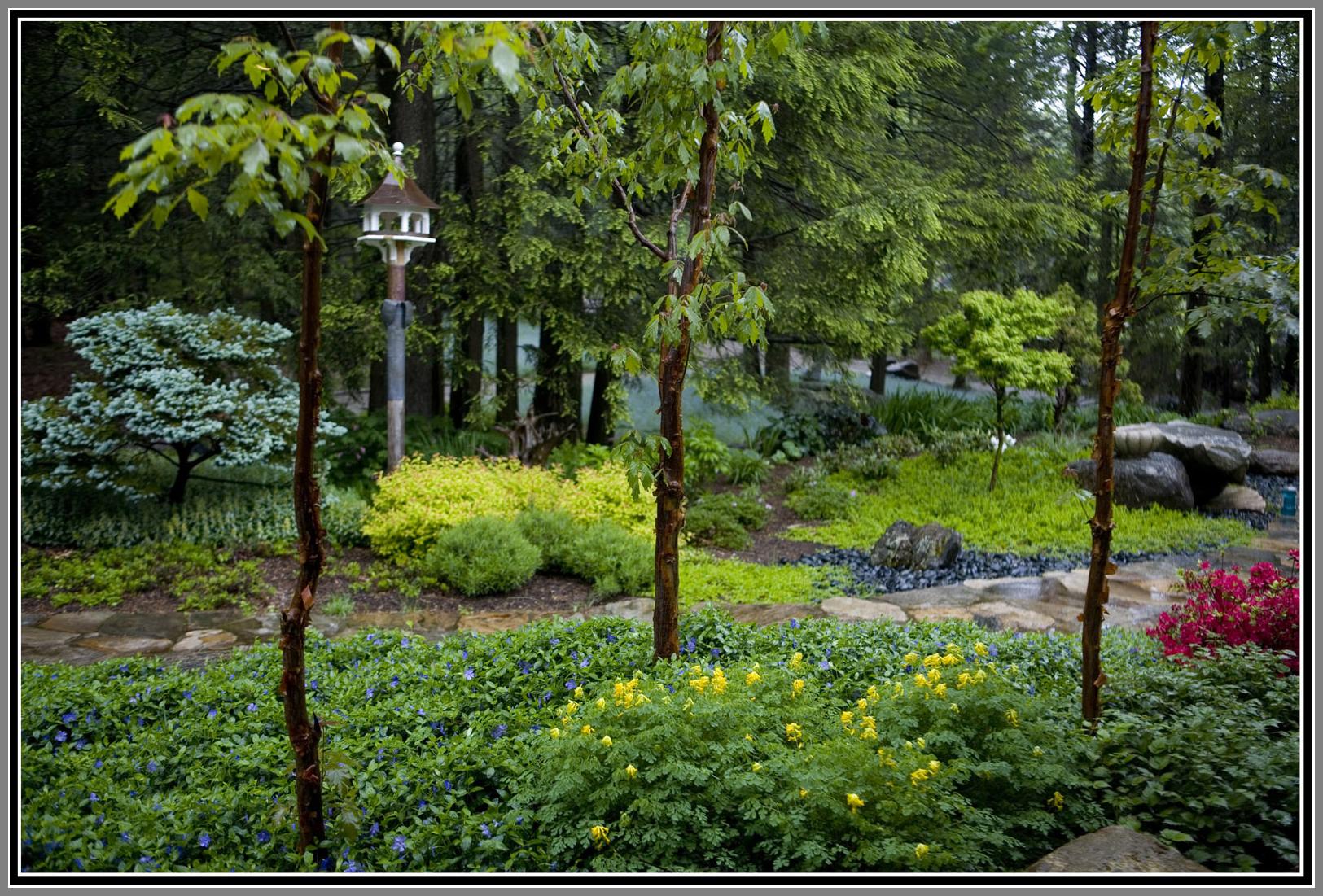 Zen Garden with simplicity