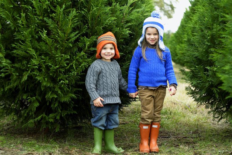 tree farmsm.jpg