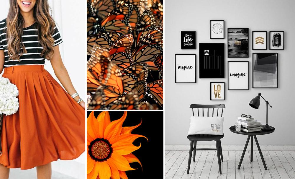 Outfit ,  butterflies ,  sunflower , room.
