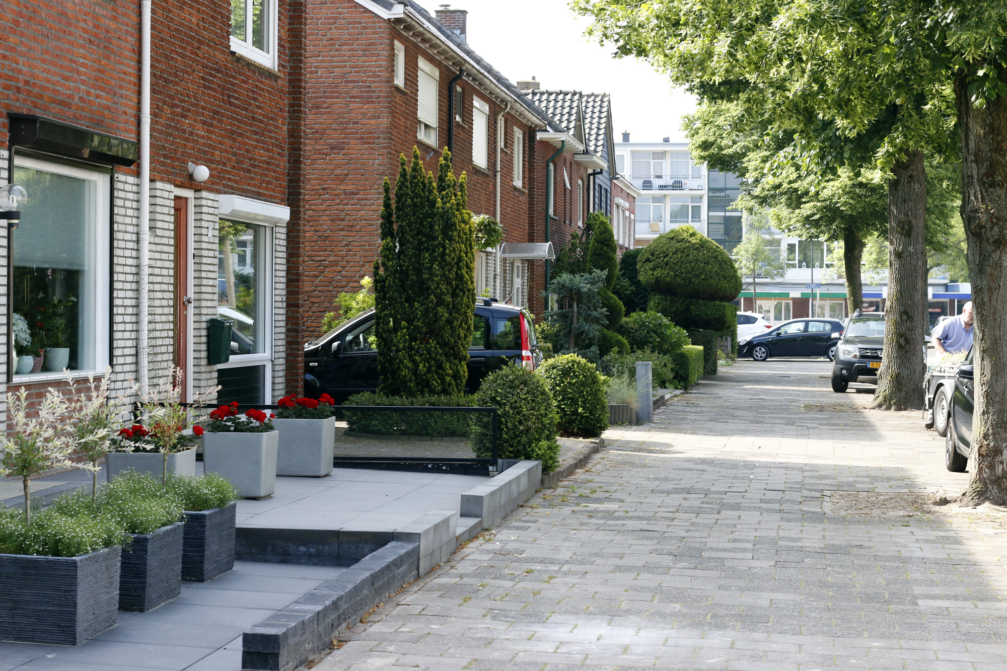 Dutch neighborhood.jpg