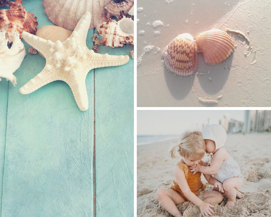 aqua planks ,  shells ,  Goldie and Ace Beach Babes