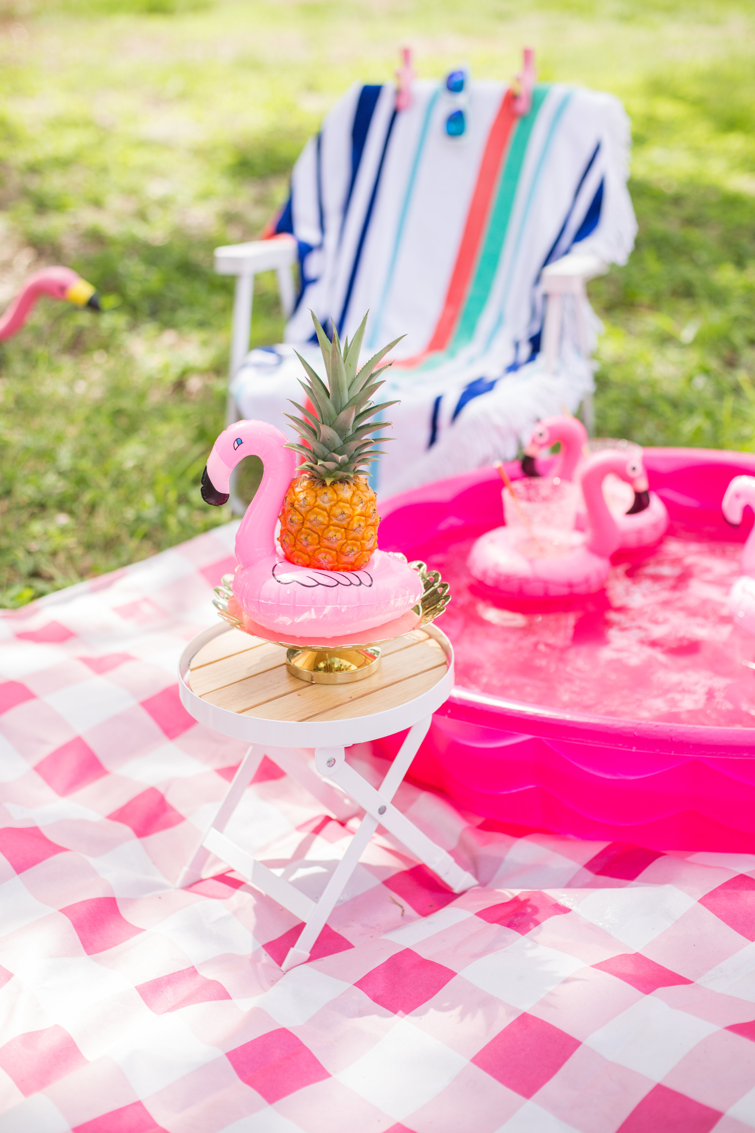 philippe_park_flamingo_photo_session_summer