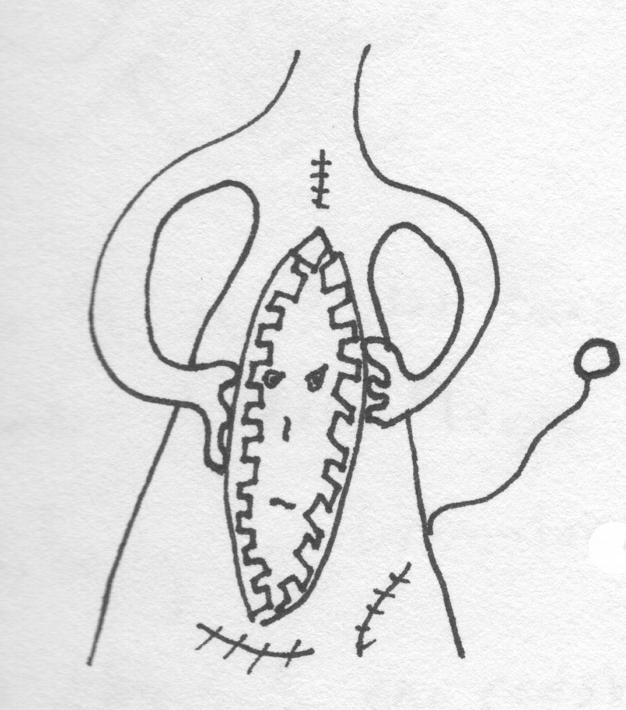 torso13.jpg