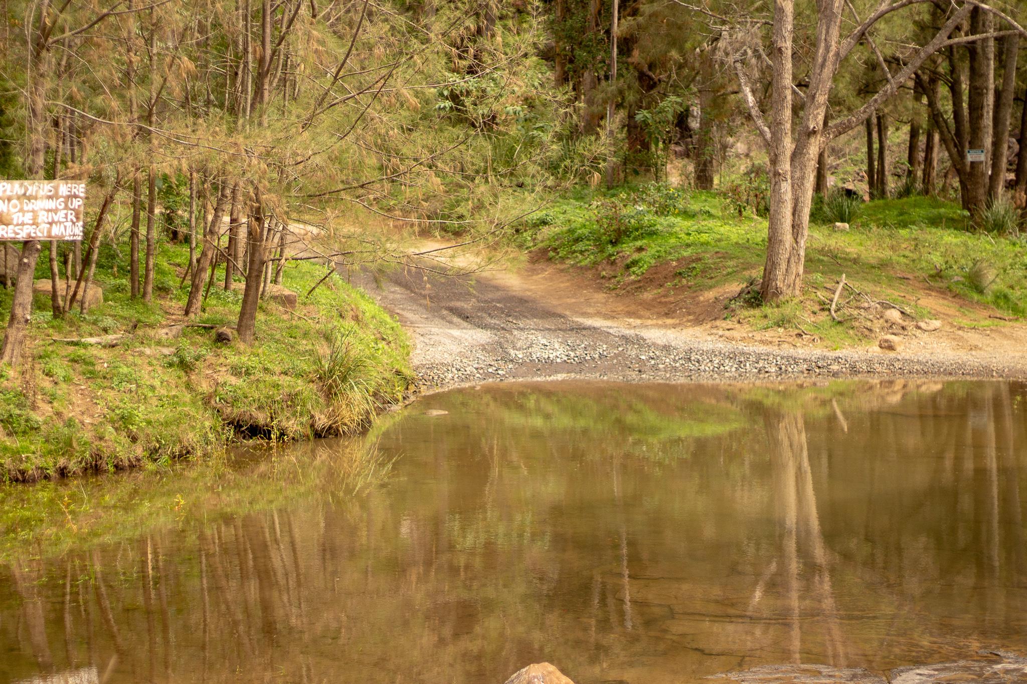 condamine river