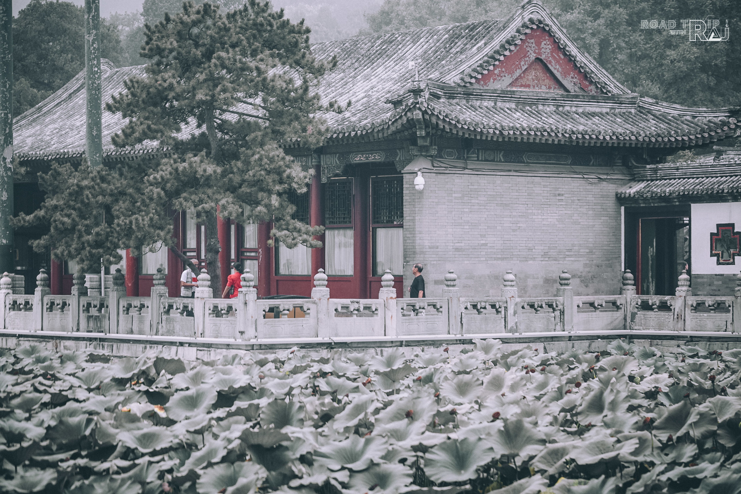 the-ambiance-of-summer-palace-beijing.jpg