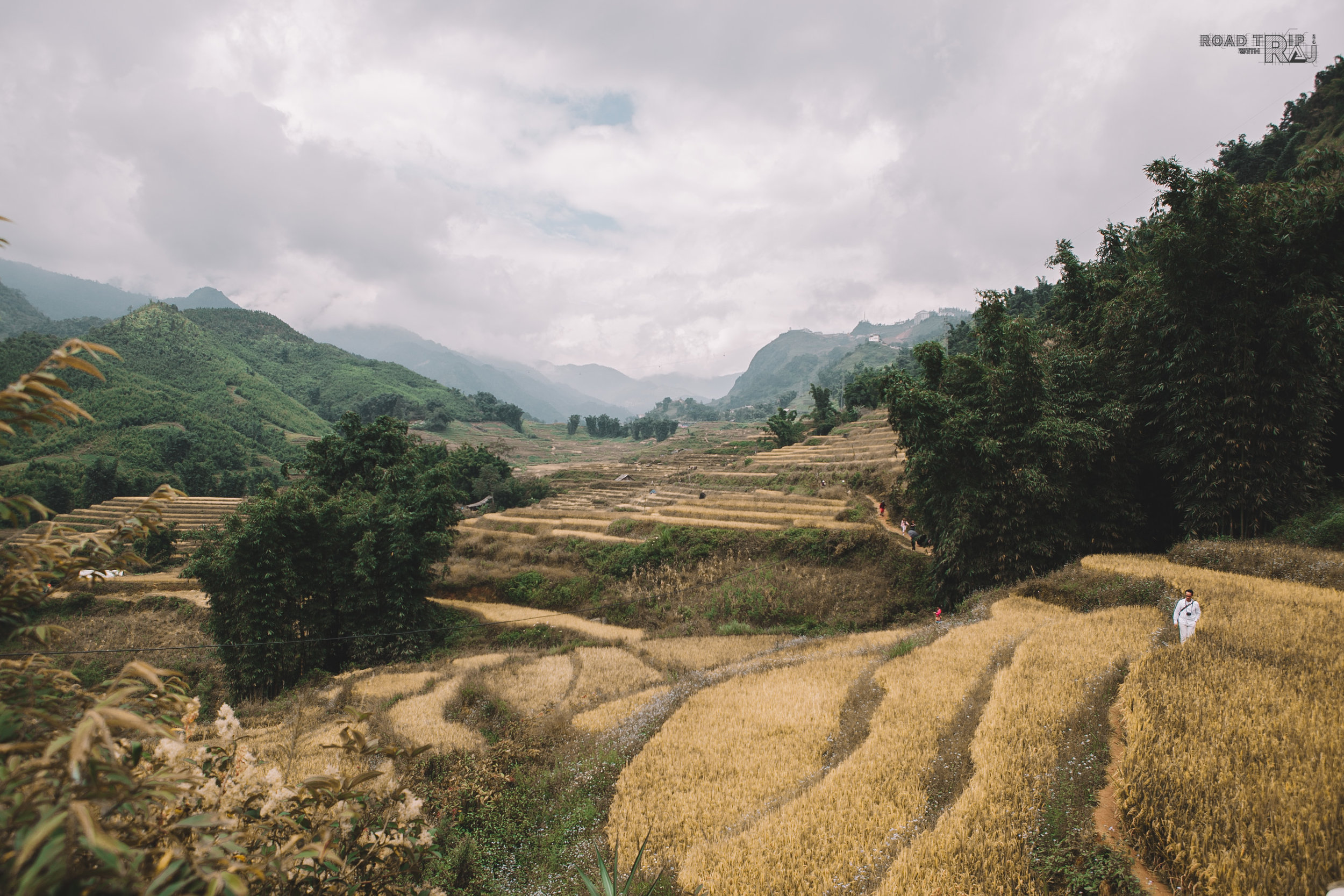 wild-and-free-in-sapa-vietnam.jpg