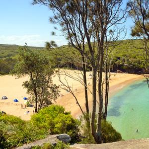 Beach-184940430.jpg