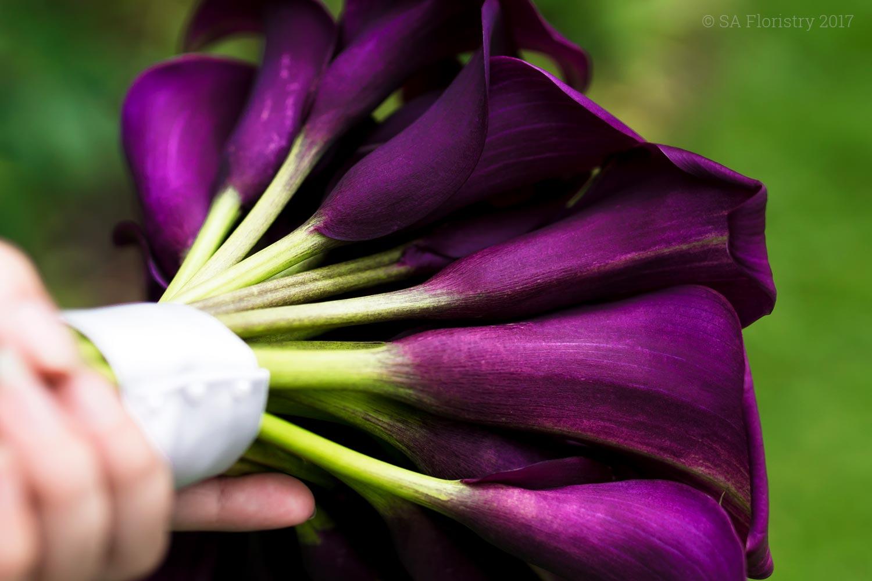 Calla lilies.jpg