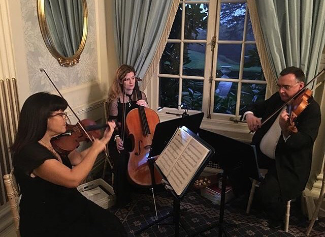 Wedding String Band Buckinghamshire