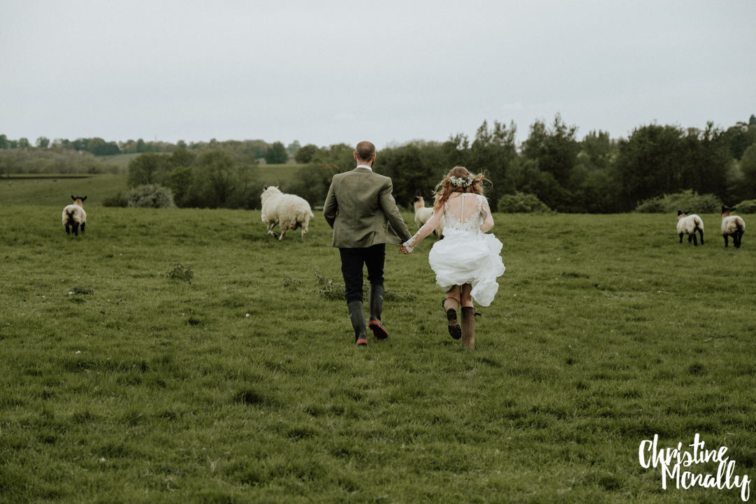 bride and groom in field with sheep Christine McNally