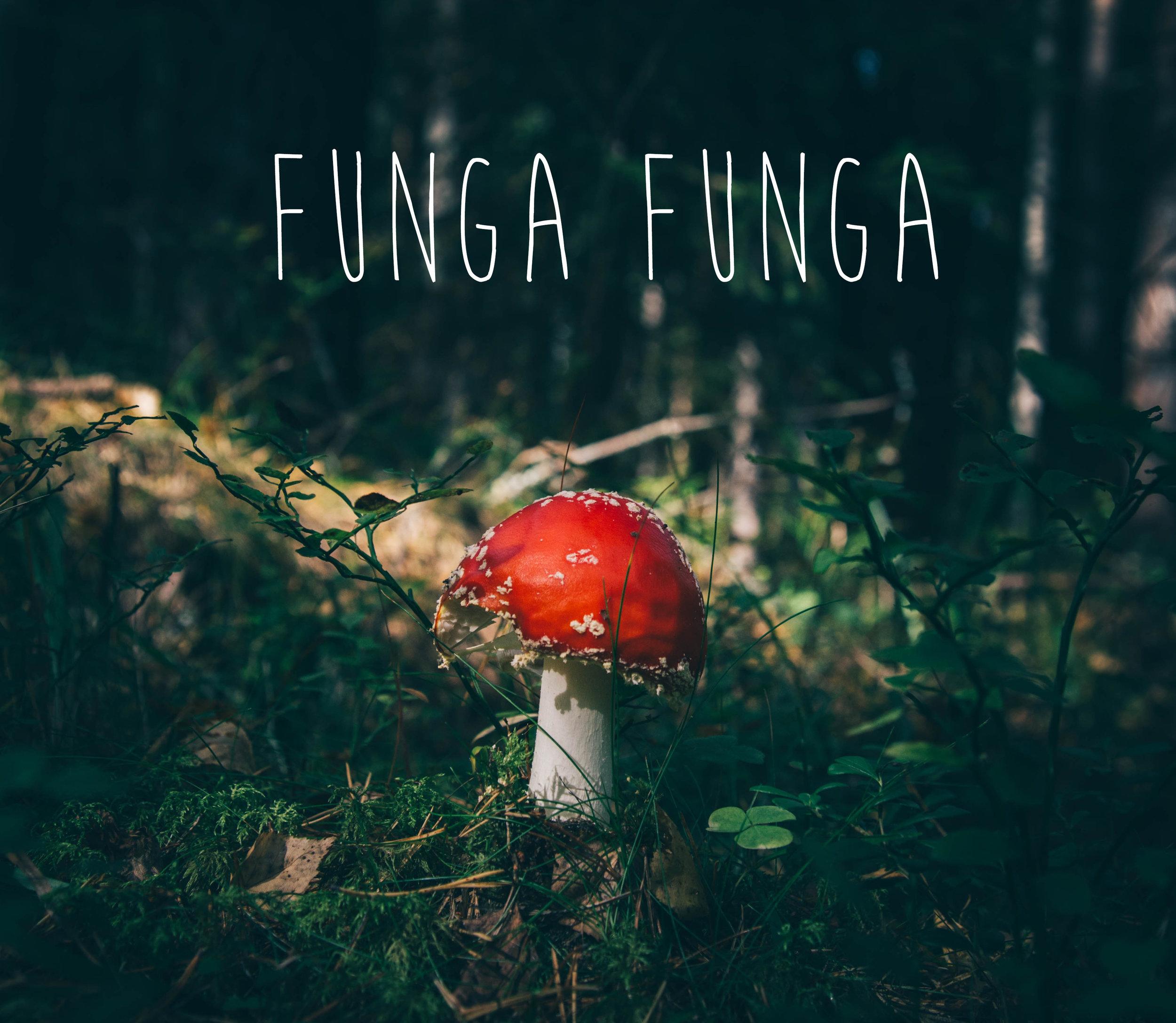 værkskitse_funga-funga.jpg