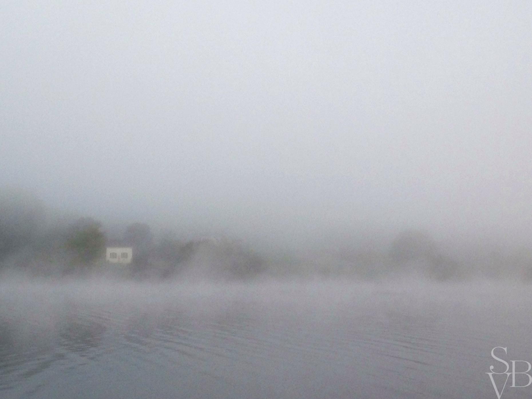 005_03_windswept_fog_001f.jpg