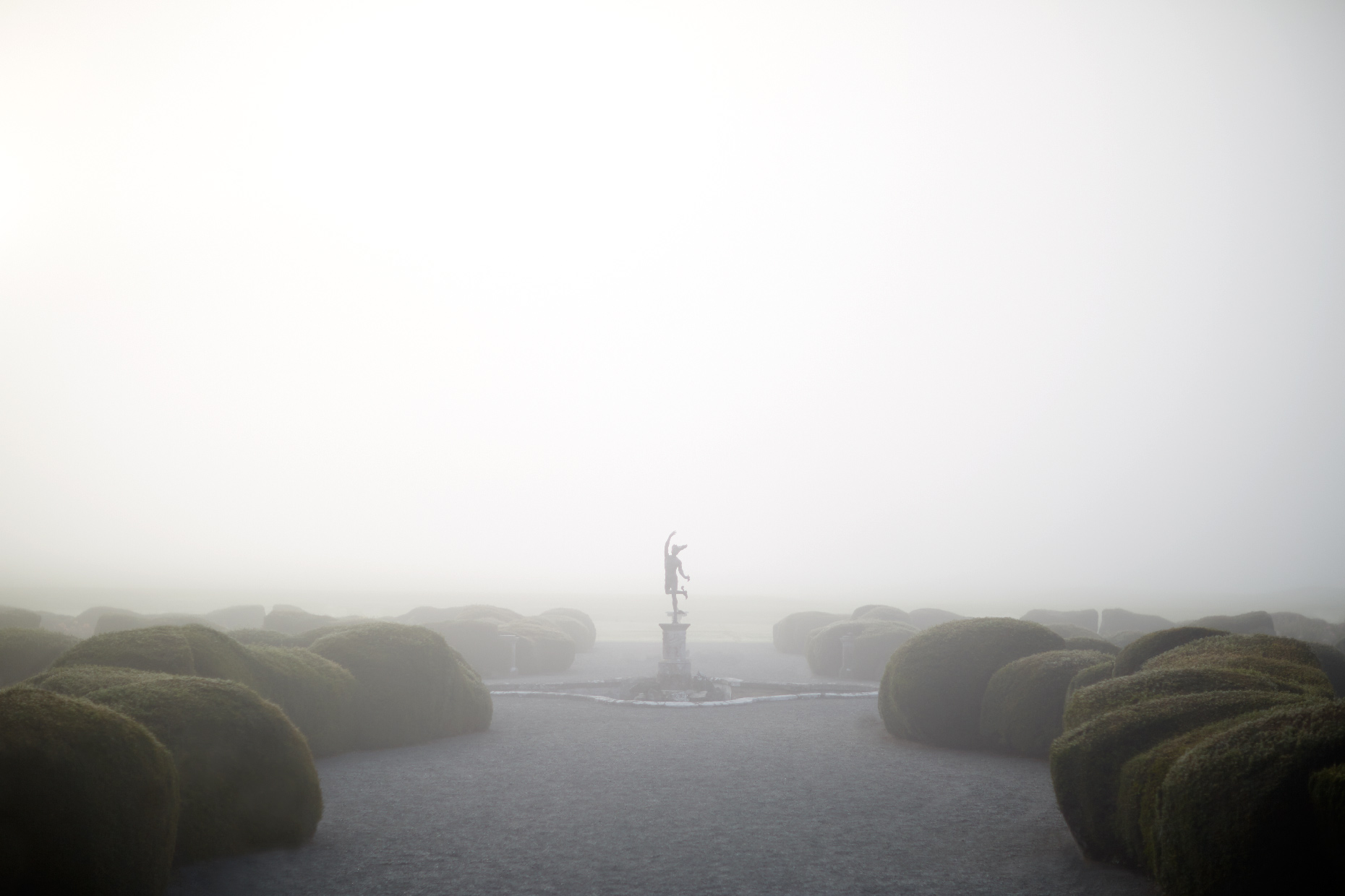 Stacey Van Berkel Photography I Statue at Carton House in the early morning fog I Kildare, Ireland
