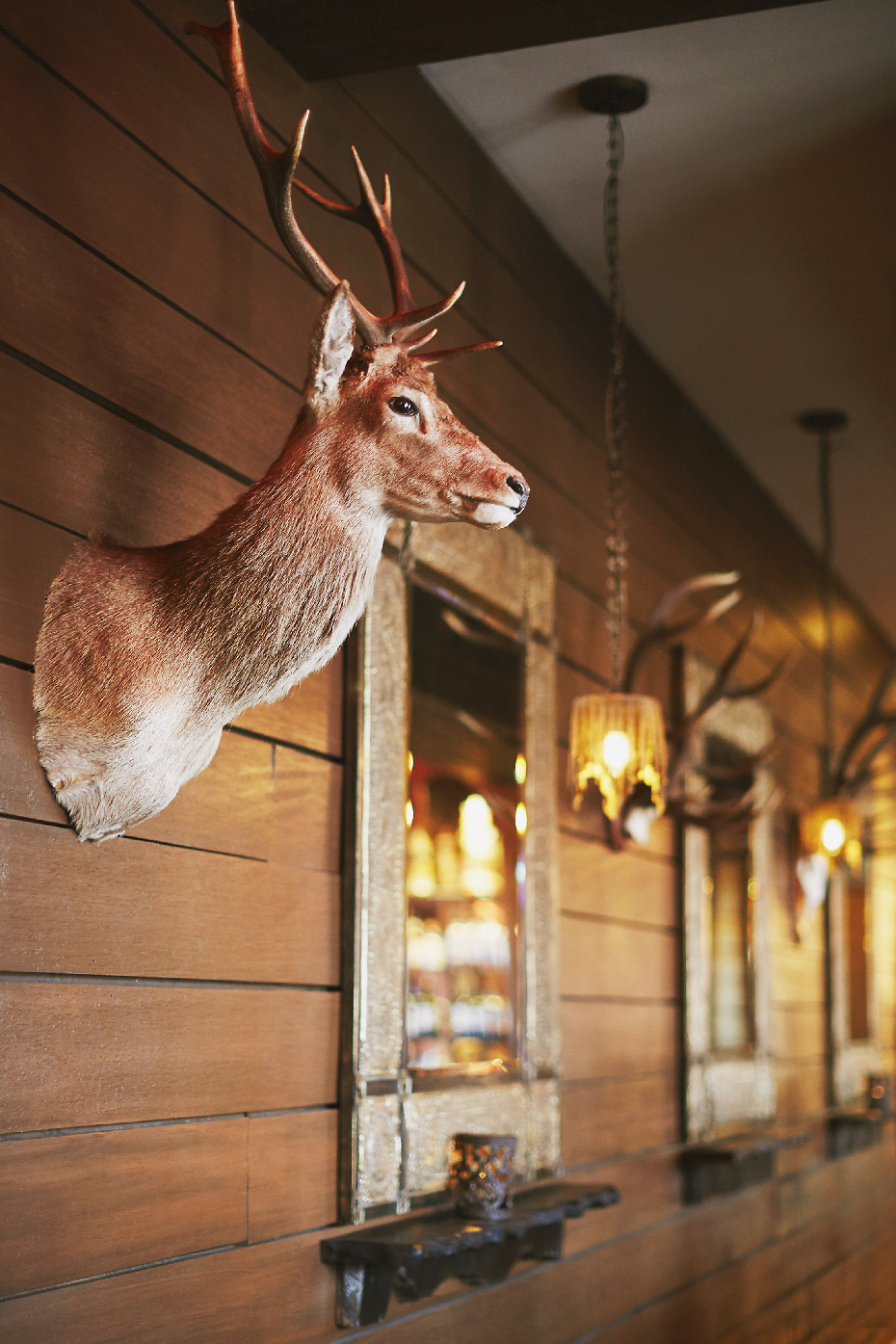 Stacey Van Berkel Photography I Rustic Decor I Grand Bohemian Hotel I Asheville, North Carolina