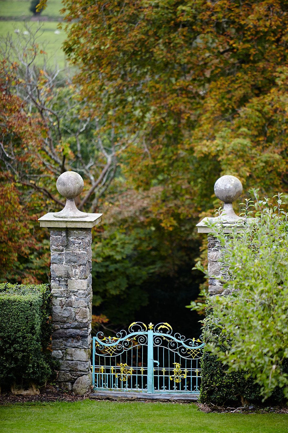 Stacey Van Berkel Photography I Ornate Turquoise Gate I Brodnaw, Wales