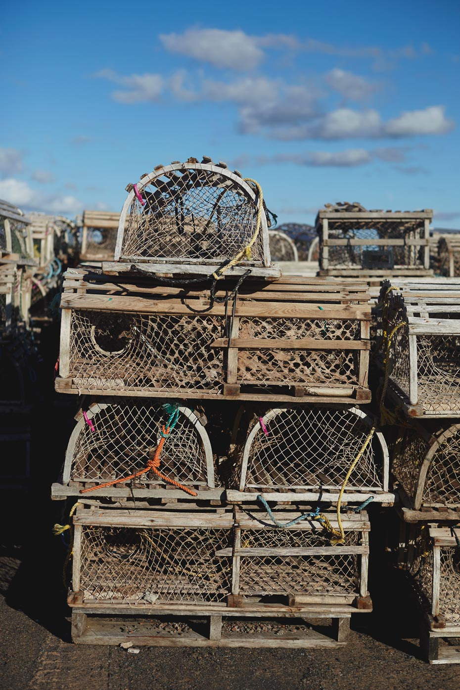 Stacey Van Berkel Photography I Stack of wooden lobster traps I Prince Edward Island