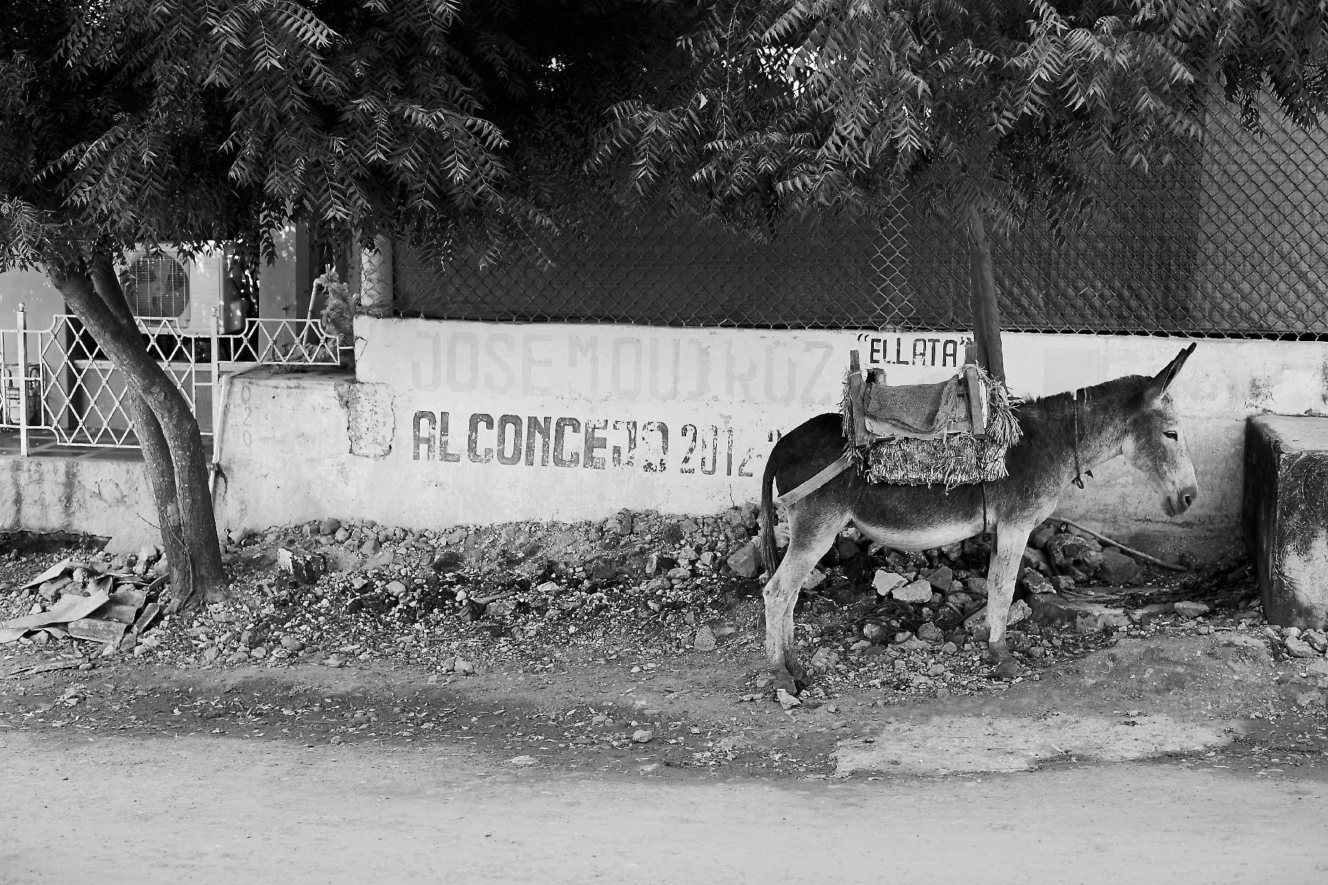 2016_0824_colombia_0300f_bw.jpg