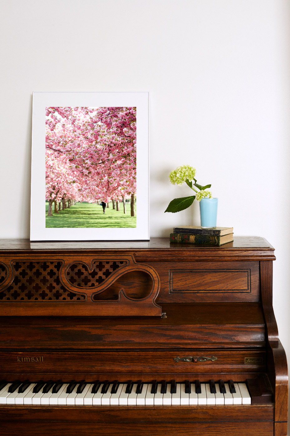 3_blossoms_II.jpg