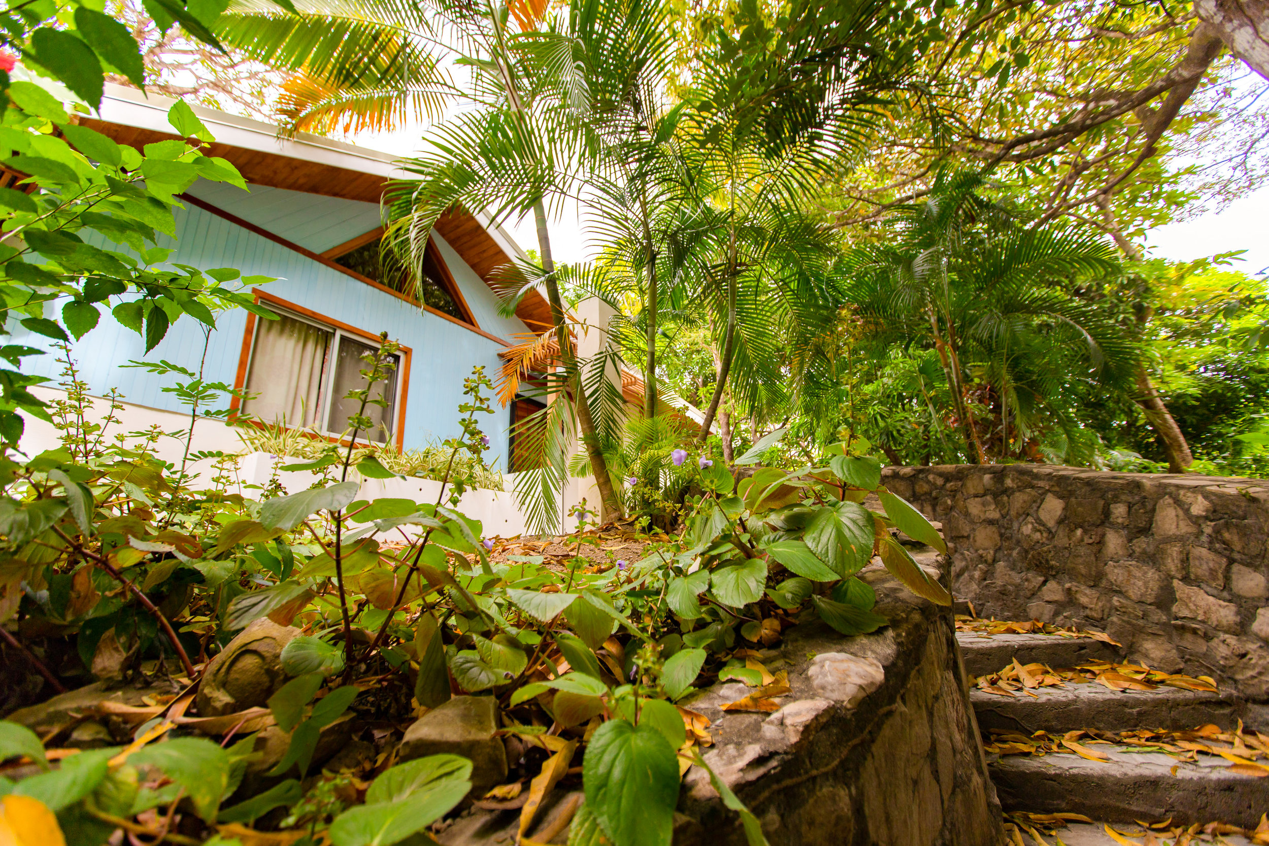 1 Bedroom 2 Bathrooms Electric Stove Fully Equipped Kitchen Walking distance to Playa Guiones WIFI Air-Conditioned  CLICK FOR MORE DETAILS