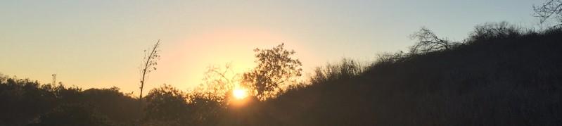 Sunset, Fryman, Los Angeles