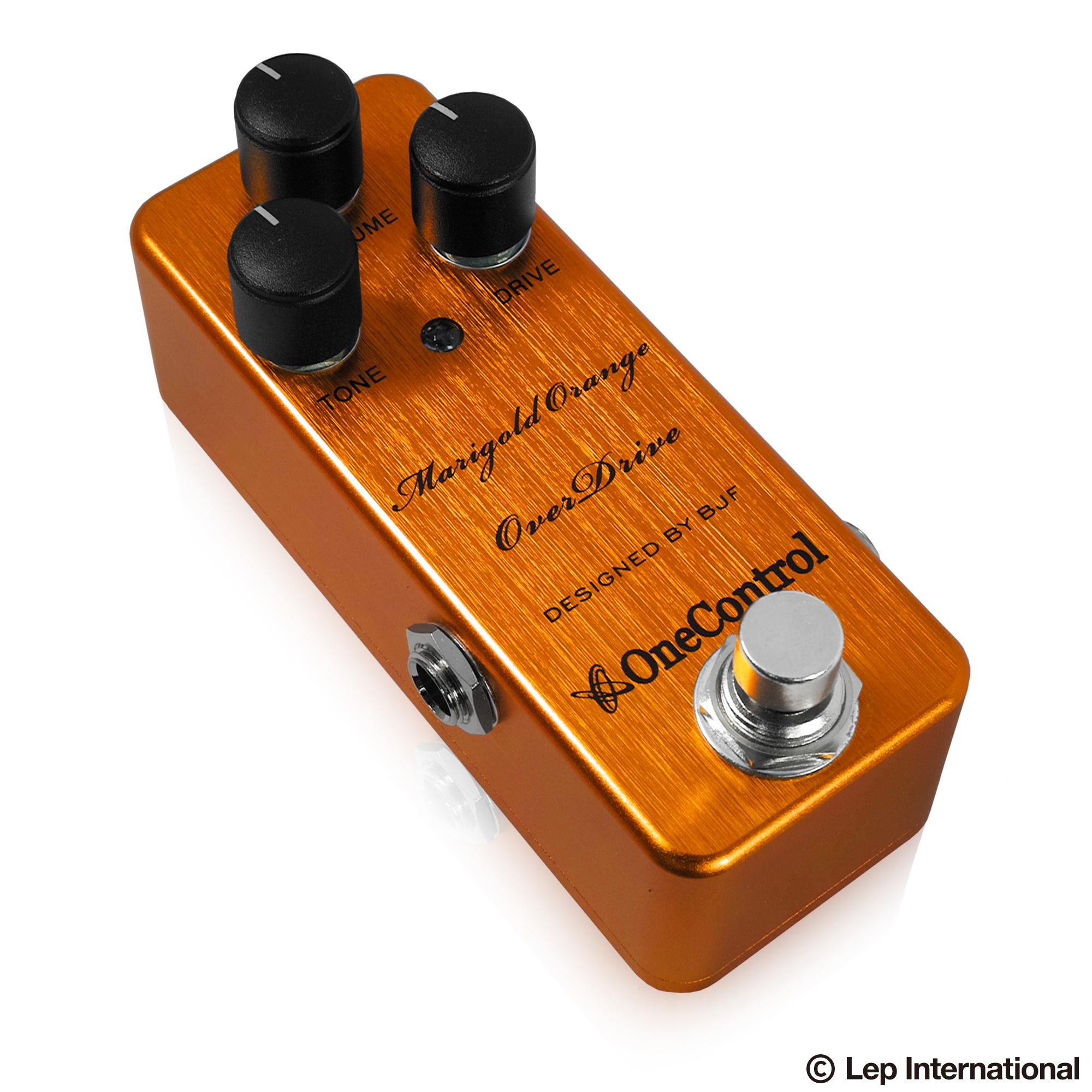 Marigold-Orange-OverDrive-03.jpg