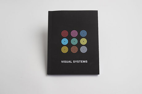 Visual Systems
