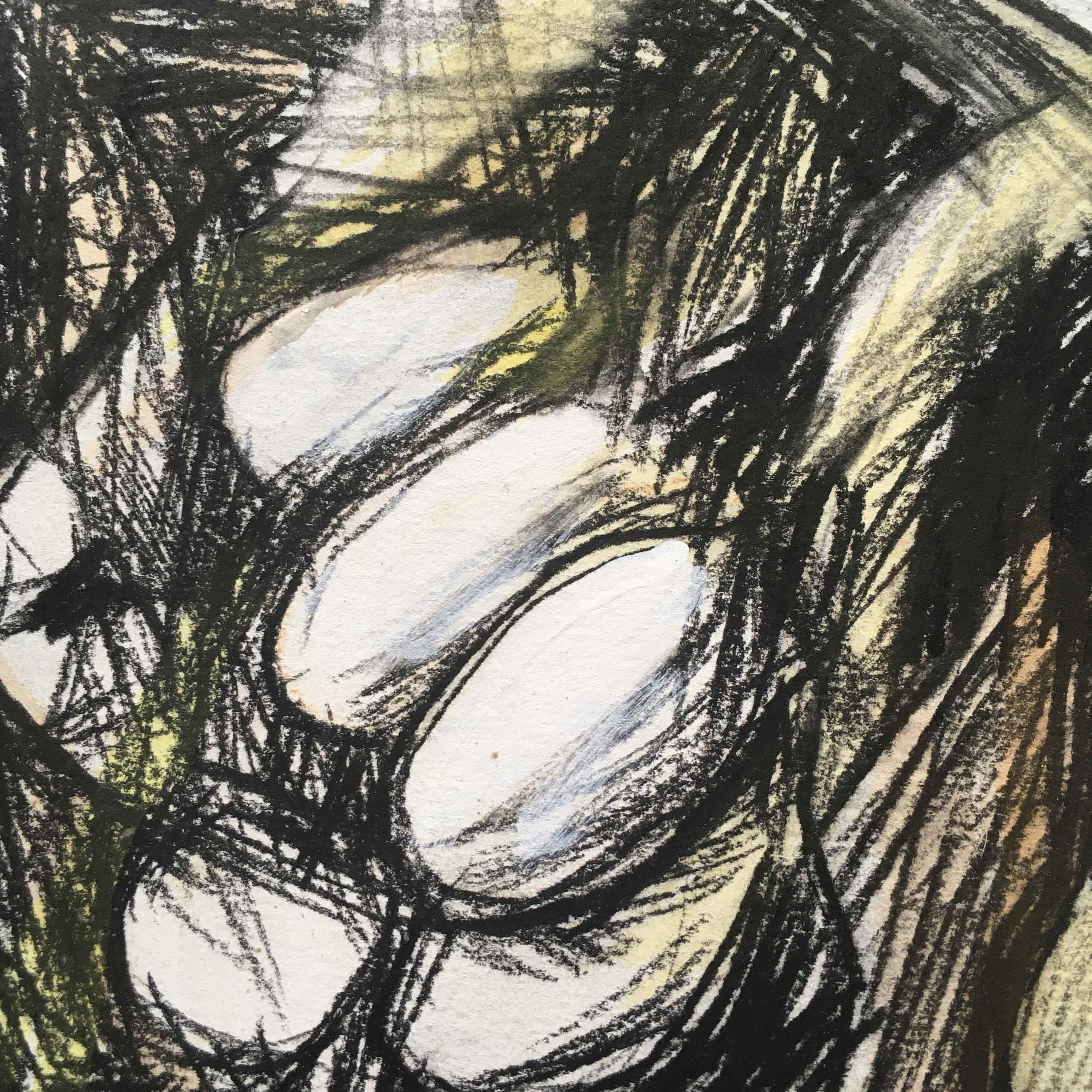 Pumpkin-drawing-detail-(5).jpg