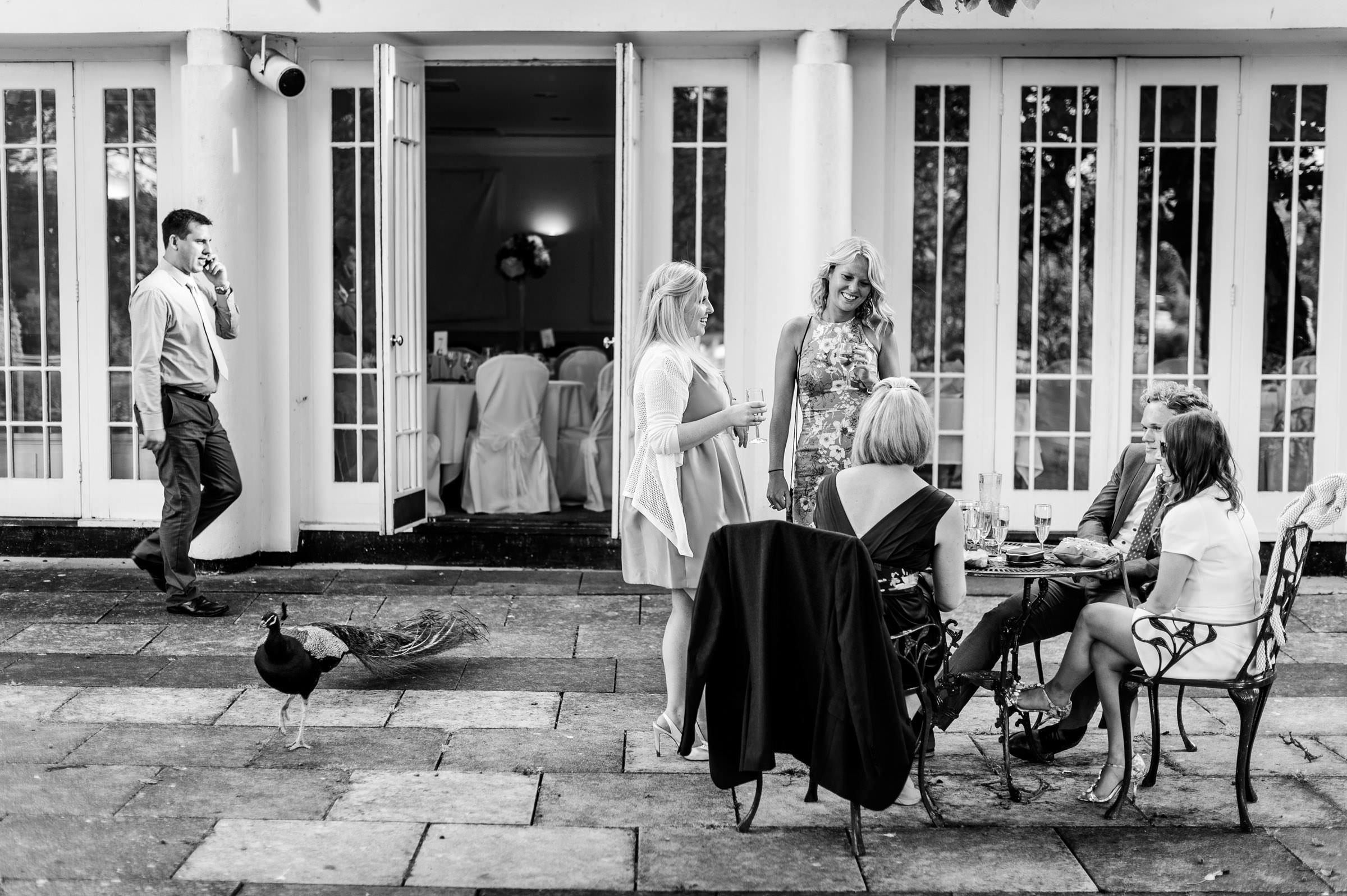 Monkey Island Wedding Photos 029.jpg