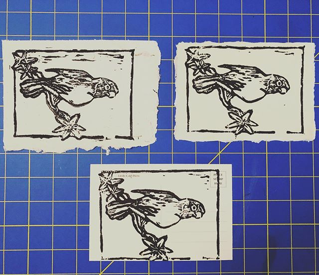 Some favorites from my fist lino print! It's exciting to have prints that I'm happy with and invigorating to have  a sense of how to move forward. Here's to motivation!! . . . #lino #linocut #linoprint #print #reliefprint #blockprint #linoprinting #linocutprints #parrot #handmade #makersmovement #makersgonnamake #illustration