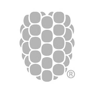 REA Sponsors_Dewberry.jpg