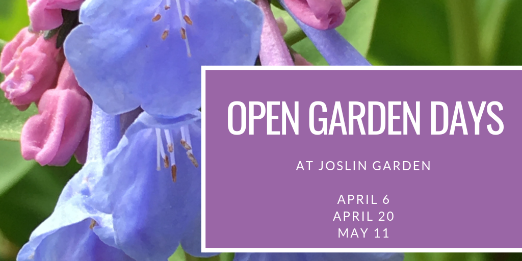 Open Garden Banner 2019.png