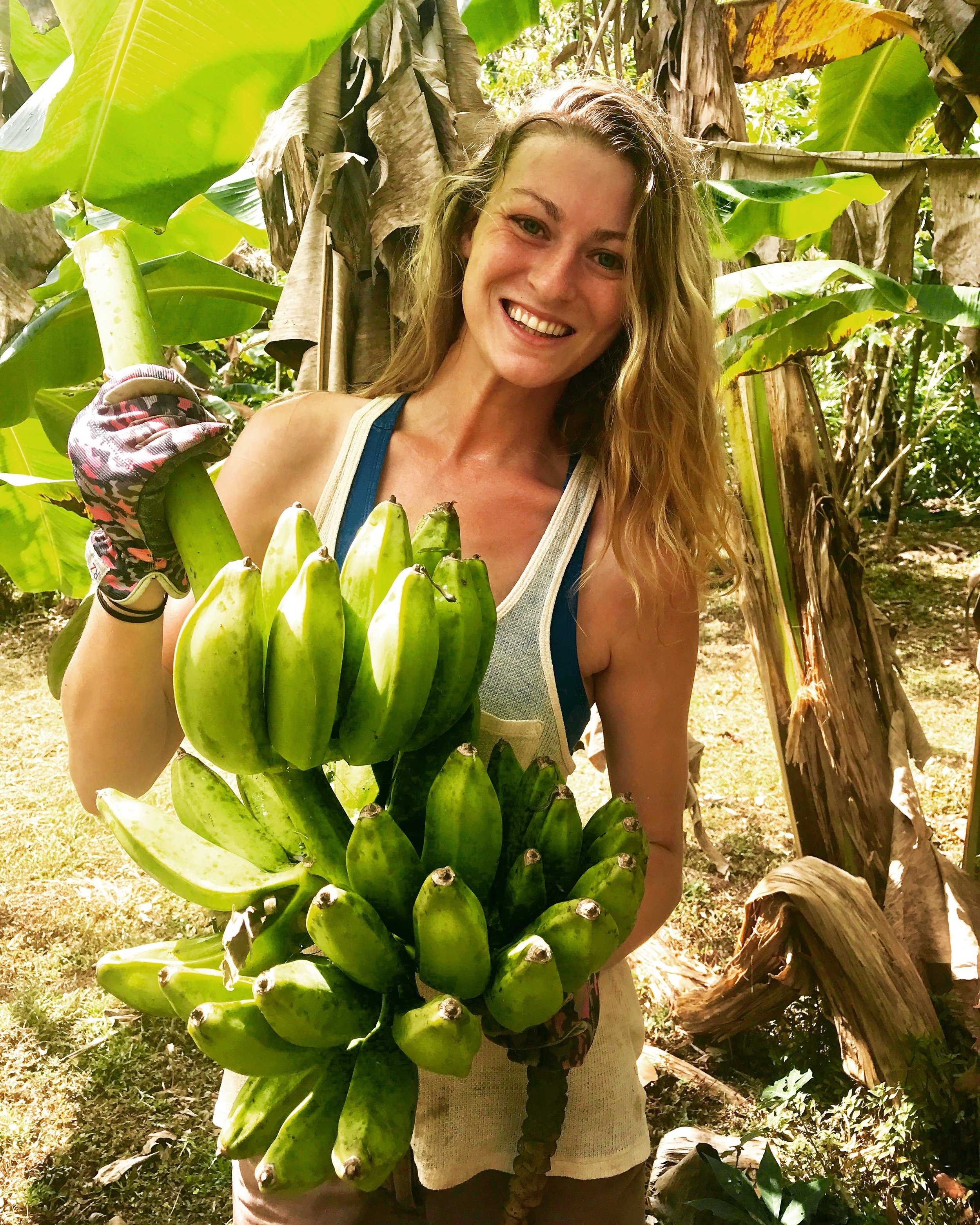 farm zoe bananas.JPG