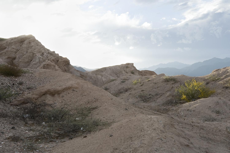 MountainofMaize_Blog_Landscape5.jpg