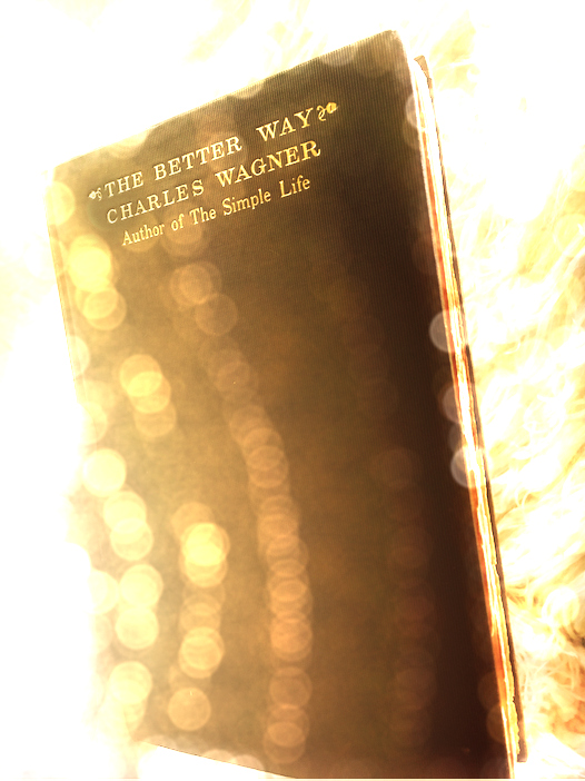 Better Way Book.jpg