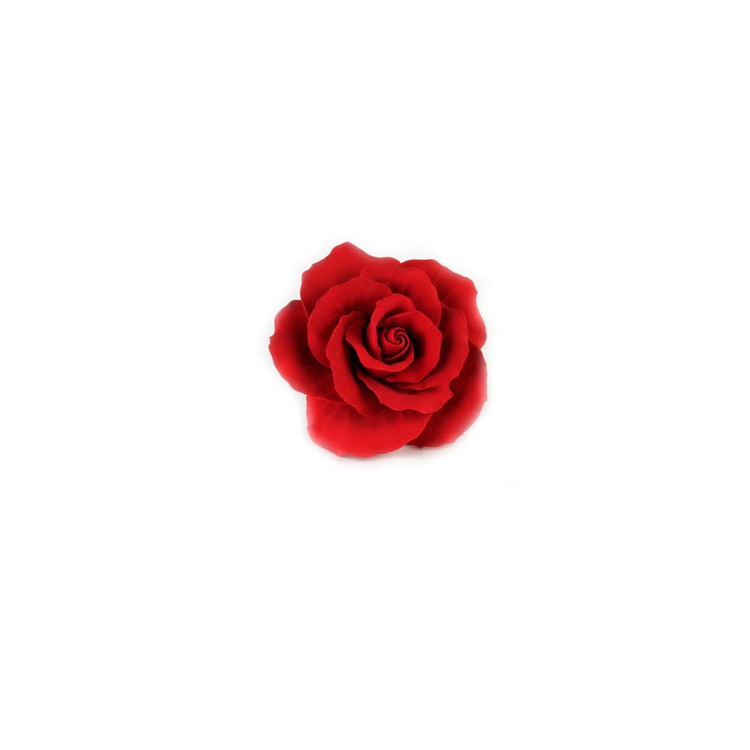 tiny red rose.jpg