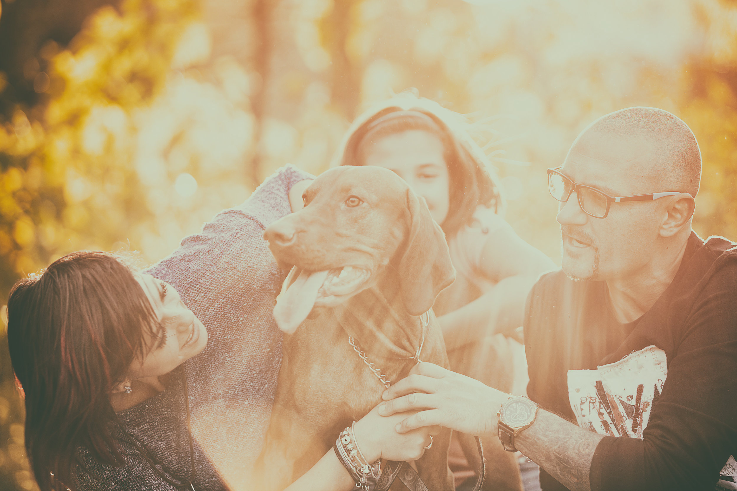 family-playing-with-their-dog-in-the-park-PYA66AS.jpg