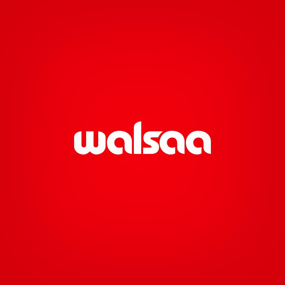 Walsa-Logo.jpg