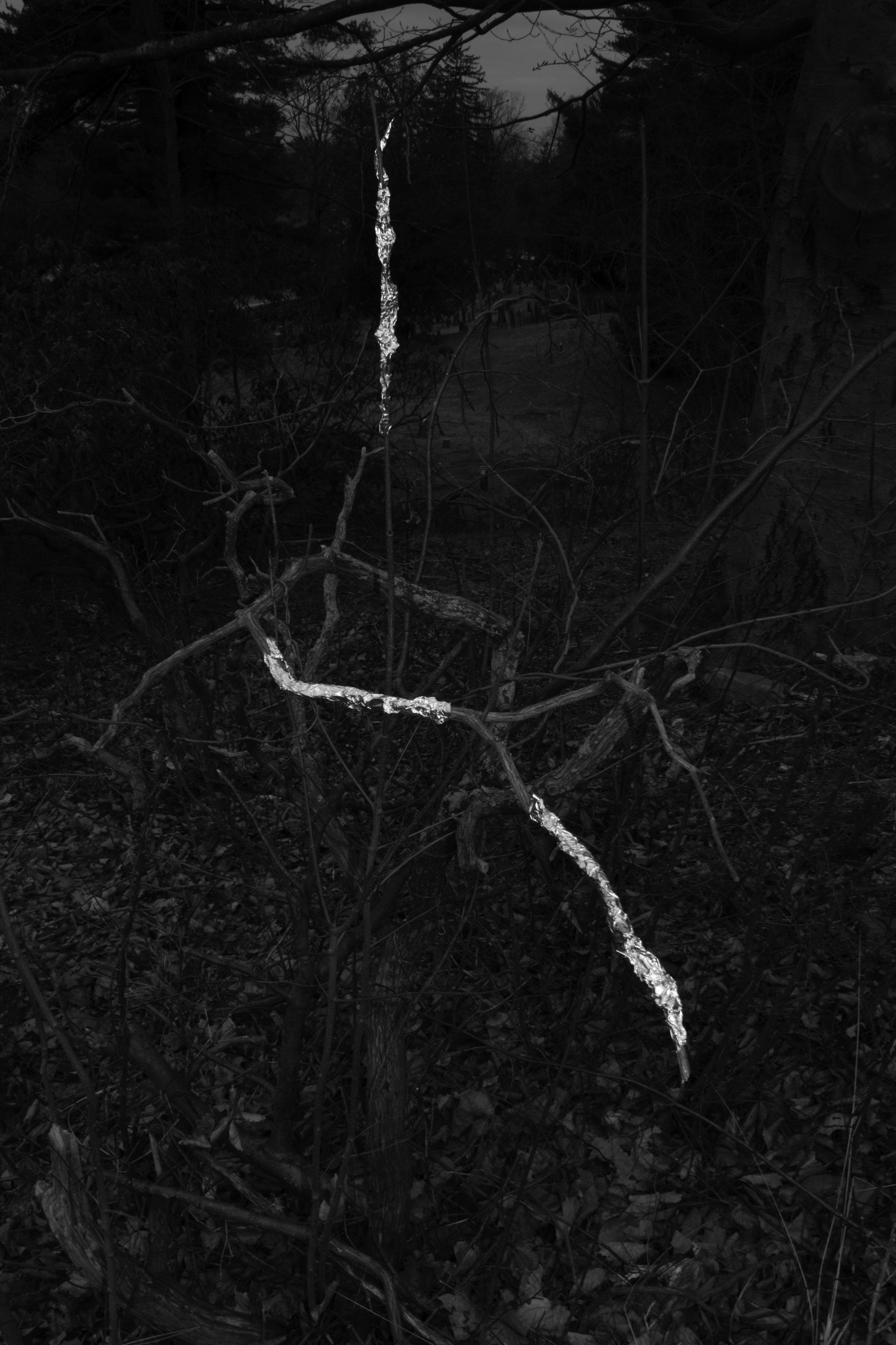 tinfoil tree.jpg