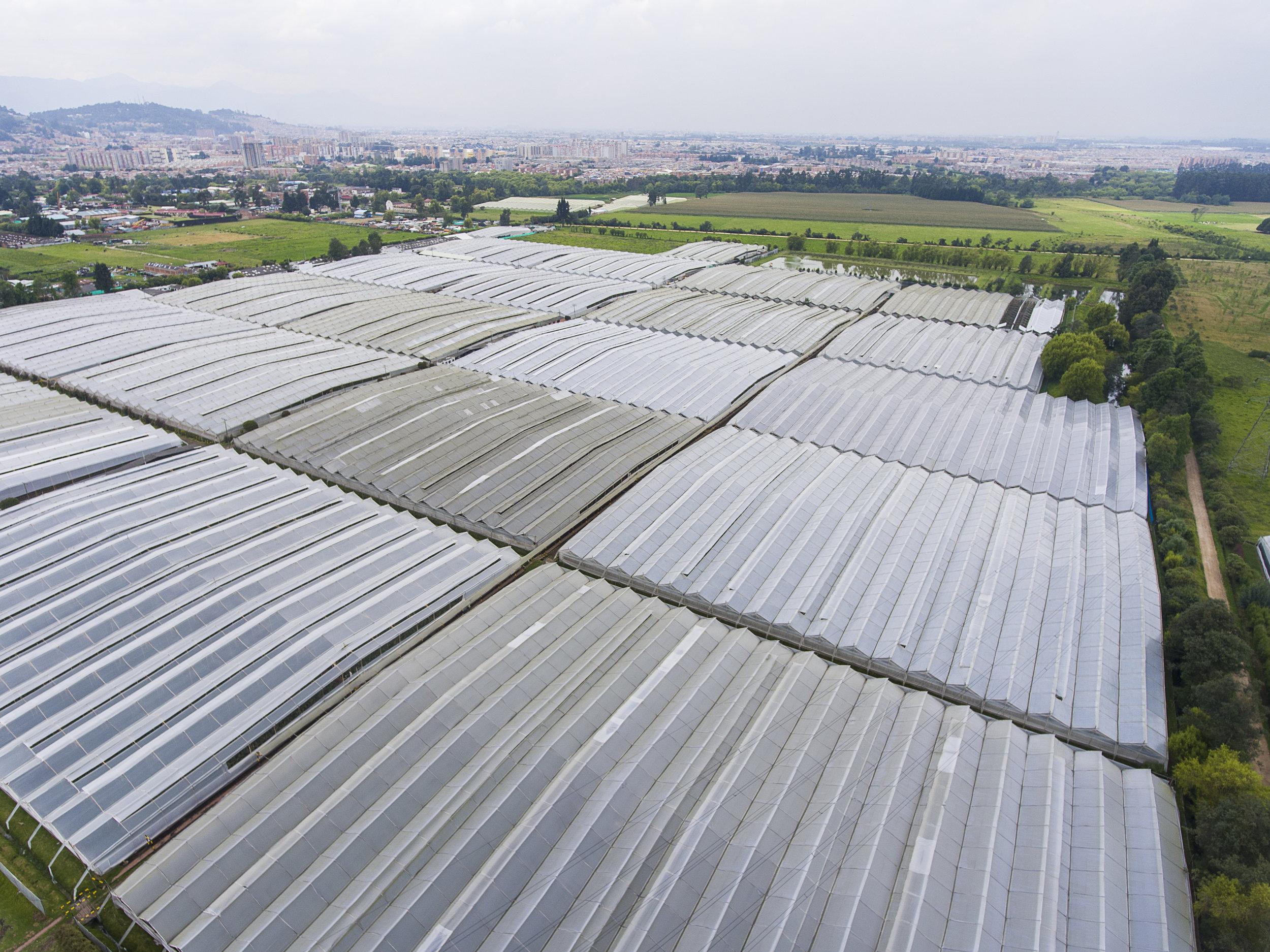 Grupo Andes Farms (19).jpg